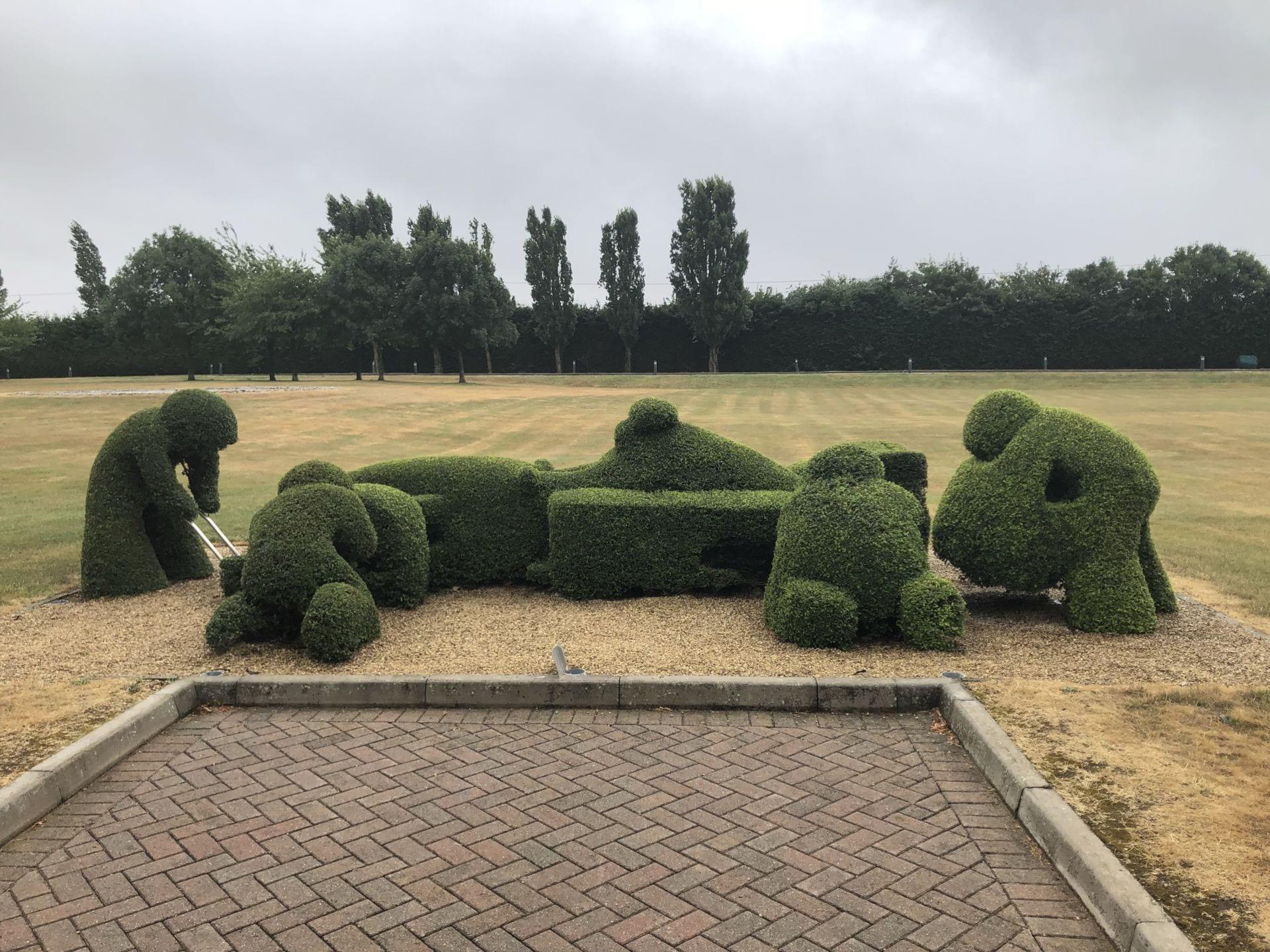 F1 car hedge
